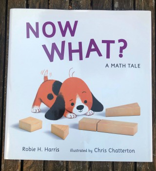 Now What? A Math Tale – Book Review